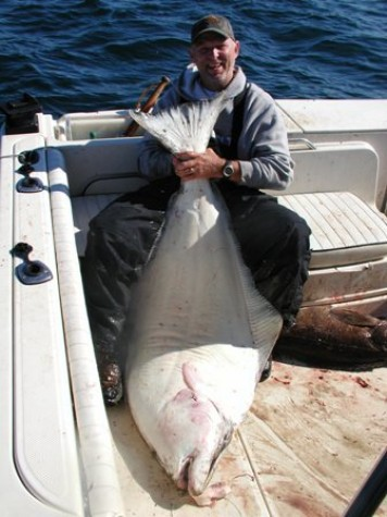 Seward halibut 2007 for Seward halibut fishing